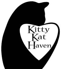 Kitty Kat Haven Celebrates New Location with Open House and Halloween Event