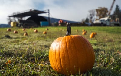​2020 Pumpkin Trains and 21+ Haunted Halloween Train on the Chehalis-Centralia Railroad